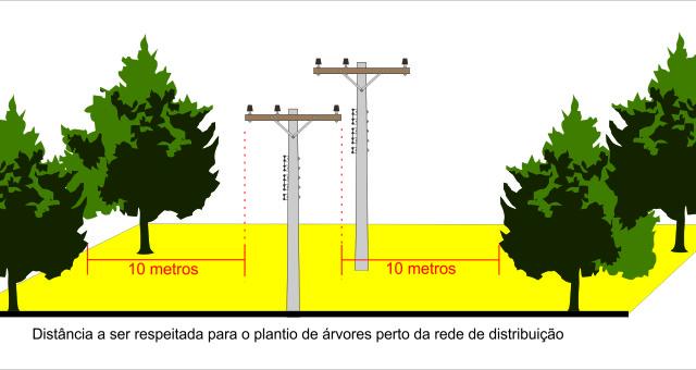 Árvores na rede: perigo e prejuízo para todos associados